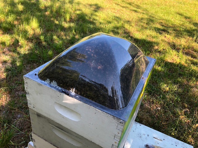 10 Frame Clauss Hive Dome
