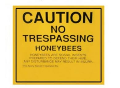 No Trespassing Sign - 11 x 11